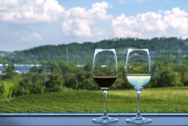 赤ワインと白ワインのある田園風景