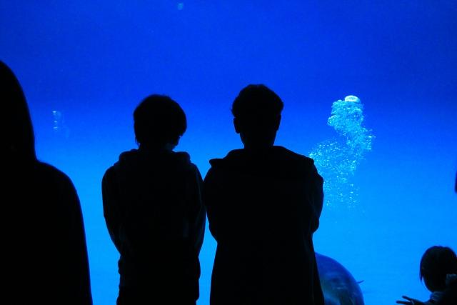 水族館デートするカップル
